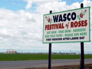 Dumpster Rental Wasco